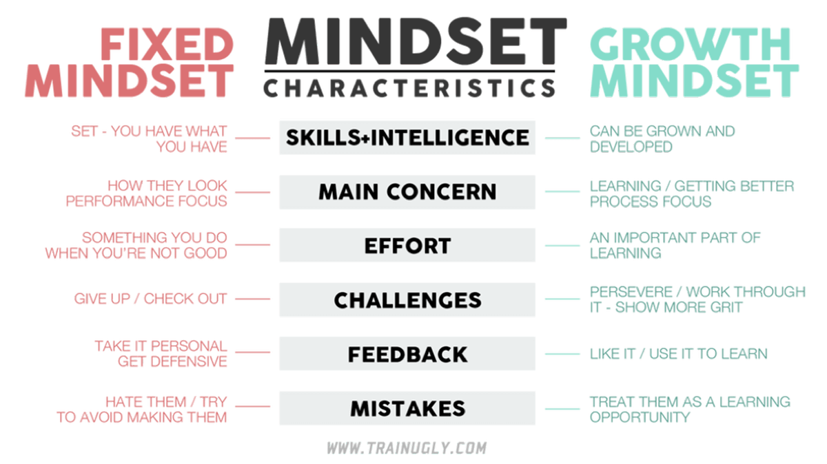 Promote a Growth Mindset